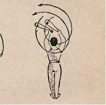 Ćwiczenia z maczugami