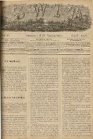 Świt : pismo tygodniowe illustrowane dla kobiet wraz z dodatkiem wzorów robót i ubrań kobiecych 1885 T. III R. II nr 13 (79)