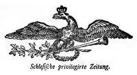 Schlesische privilegirte Zeitung. 1790-05-10 [Jg. 49] Nr 55