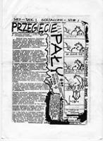 """Przegięcie pały: pismo Ruchu """"Wolność i Pokój"""", nr 2"""