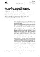 Analysis of the relationship between the inner structure and the magnitude of atherosclerotic plaques - Bogdan, Maria