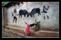 Bulfight - Hattacharjee, Bhaskar