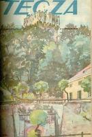 Tęcza : ilustrowane pismo tygodniowe 1928 R.II z.37
