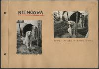Niemcowa - Kownacka, Maria (1894 - 1982)