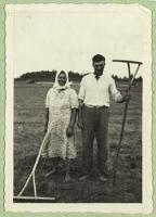 Chłopi na Podlasiu w czasie grabienia siana [dokument ikonograficzny]